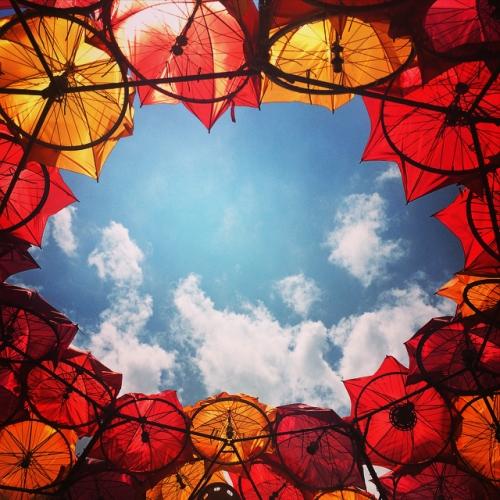 UmbrellasGovernorsIsland